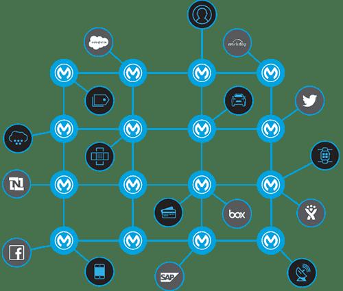 mulesoft-process